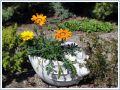 Formy do waz, wazonów i donic